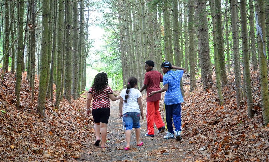 Walking in the woods at Camp Anne